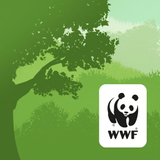 WWF Forest
